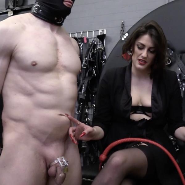 Countess diamond Bristol Dominatrix sits with Chastity submissive